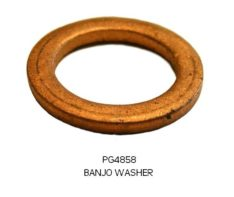 BANJO WASHER PG4858